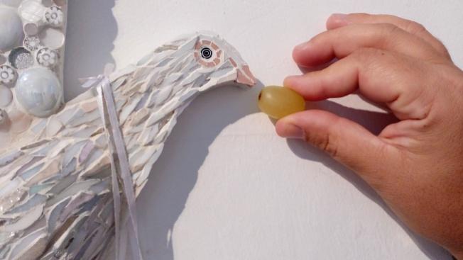 feeding-doves