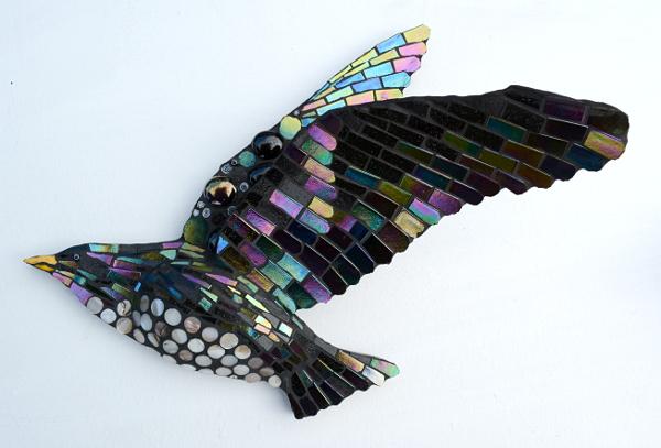 starling-3-small