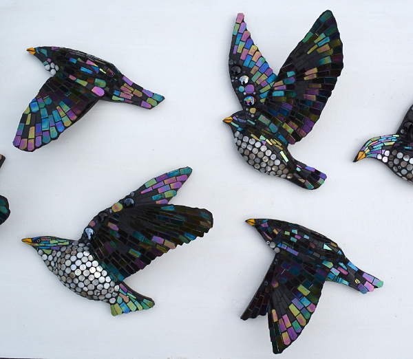 starlings-middle-small
