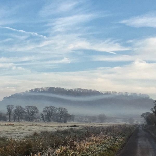 mist on the Somerset Levels