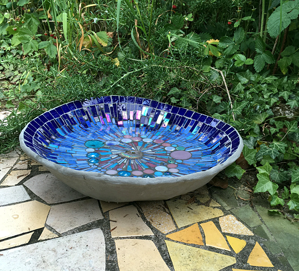 summertime blues bird pool